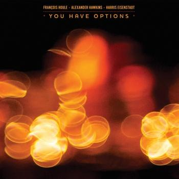 Cover Harris Eisenstadt: You Have Options