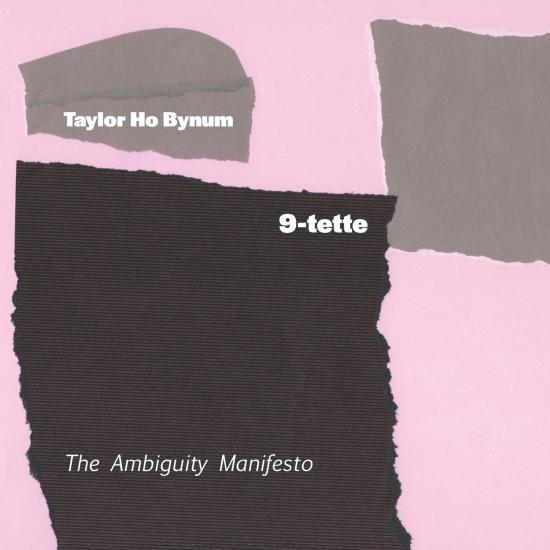 Cover The Ambiguity Manifesto