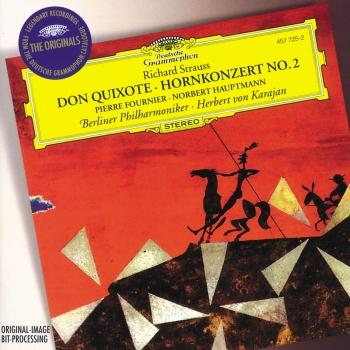 Cover Strauss, R.: Don Quixote; Horn Concerto No.2