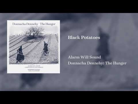 Video Alarm Will Sound - Donnacha Dennehy: The Hunger